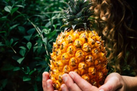 Tel Aviv Israel July 18, 2019 Closeup of an unknown young woman holding a small pineapple on nature background