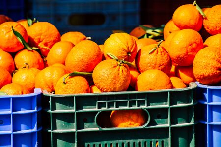 View of various fruits sold at the market of Limassol in the morning Фото со стока