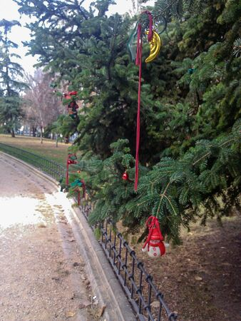 View of some trees in an urban park in Madrid. They are decorated with some typical Christmas ornaments. Archivio Fotografico