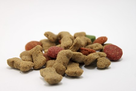 dog food: Good dog food Stock Photo