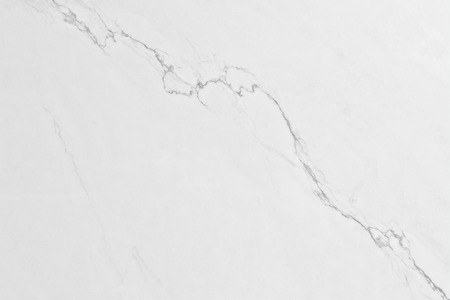 veining: abstract texture or background