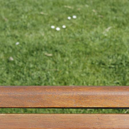 lonesomeness: bench over green lawn
