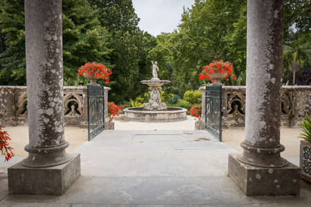 Garden of Monserrate Palace, Sintra. Portugal.