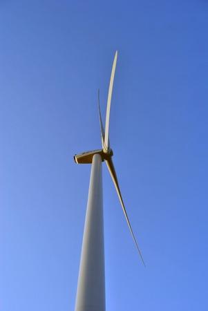 a wind mill. photo