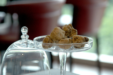 alba: White truffle Stock Photo