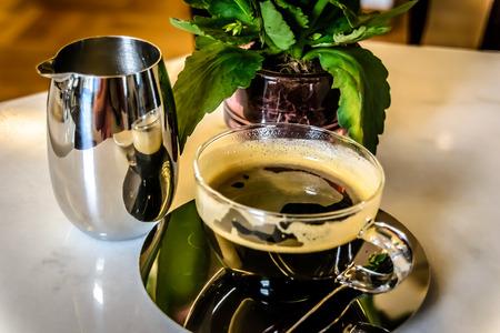 kopi: Civet Coffee Kopi Luwak