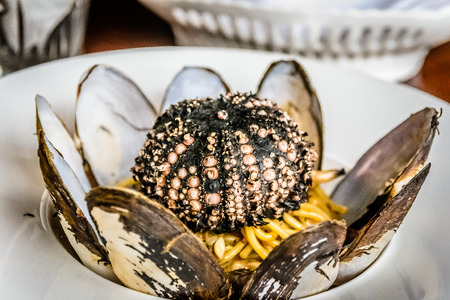 clams: Spaghetti with Sunset Clams and Sea Urchin Stock Photo
