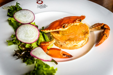 epicurean: Panzanella Crab Meat Salad Granchio with marinated Tomato Lemon dressing Traditional Italian bread salad topped with modern salad.