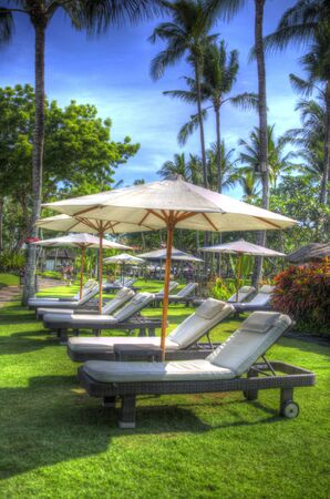reclining lounge chairs under large umbrellas next to swimming pool