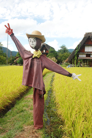 Scarecrow in farm Stock Photo
