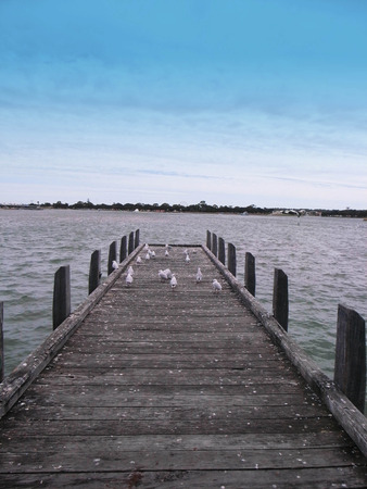 A long jetty reaching out a sea with seabirds Stock Photo