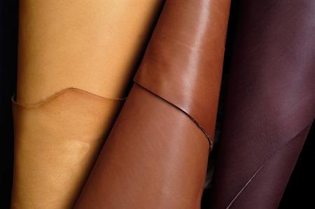 skins sample,leather