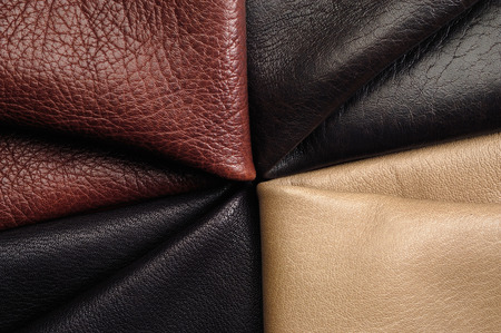 colorful skins sample Standard-Bild