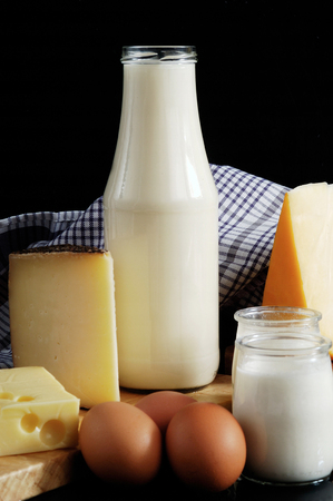 dairy product: dairy products milk and cheese Editorial