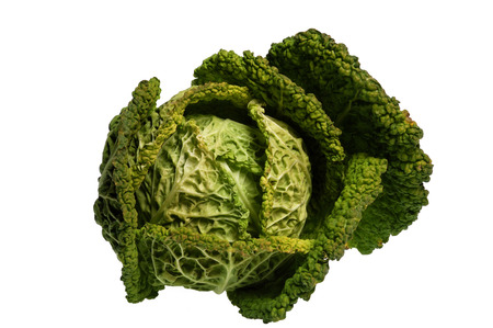 savoy cabbage: Savoy cabbage isolated on a white background, vegetable Stock Photo
