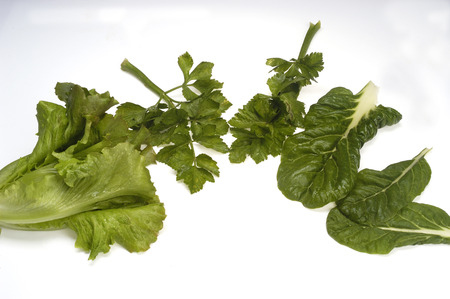 green leafy vegetables: variety of green leafy vegetables Stock Photo