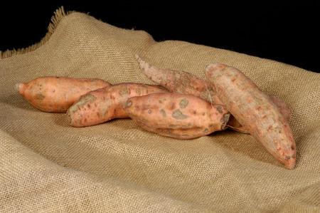 sweet potato: batata,