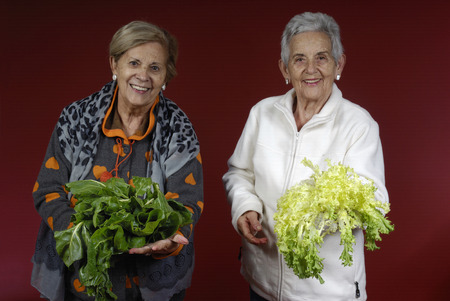 endive: Two senior women with chard and endive Stock Photo