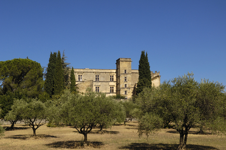 lourmarin: Castle of Lourmarin, Provence Alpes Cote d Azur, France