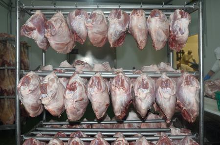 cold storage: Boneless hams in a meat industry