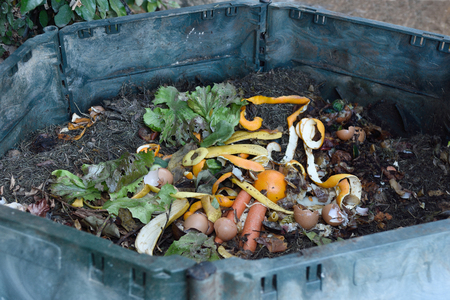 inside of a composting container 스톡 콘텐츠
