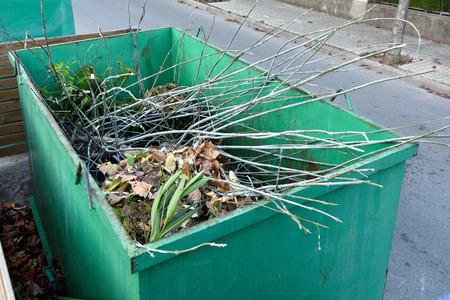 재활용 용 컨테이너에 남아있는 나무