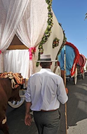 ornamentations: Driver oxen the pilgrimage of El Rocío in Seville