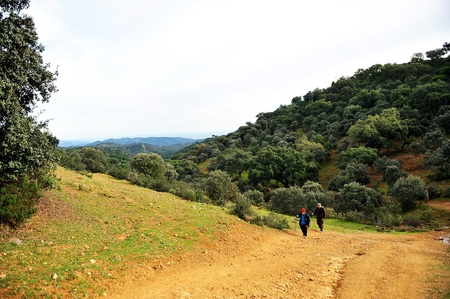 pilgrim journey: Two pilgrims on the Camino de Santiago in the province of Cordoba, Spain