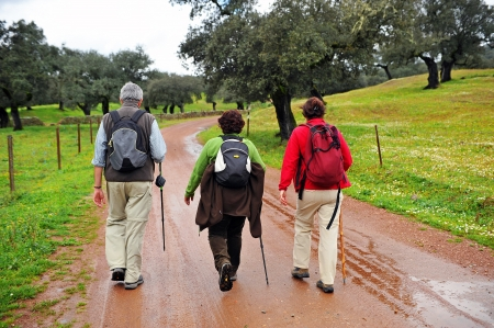 Group of pilgrims on the Camino de Santiago from Huelva, Spain