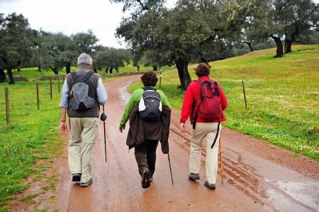 ruta: Group of pilgrims on the Camino de Santiago from Huelva, Spain