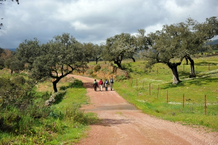 ruta: Group of hikers in the Sierra de Aracena, Huelva, Spain Stock Photo