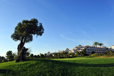 huelva: Golf course at luxury development, El Rompido, Huelva, Spain Editorial