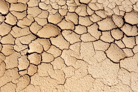 desertification: Drought, climate change