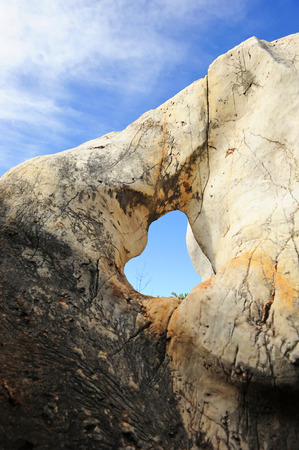 Limestone eroded, Cerro del Hierro, Province of Sevilla, Andalusia, Spain photo