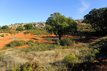 Mining landscape, Cerro del Hierro, Province of Sevilla, Andalusia, Spain photo