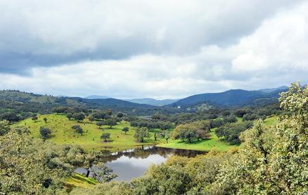 Sierra de Aracena Natural Park, province of Huelva, Andalucia, Spain, Southern Europe