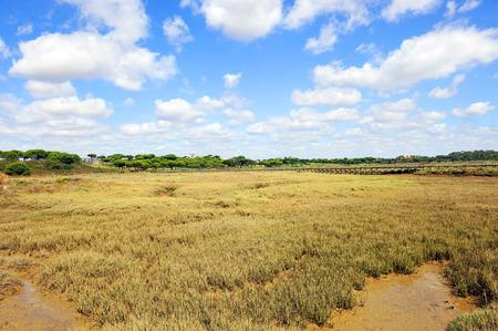 huelva: The marshes of the Rio Piedras, El Rompido, Huelva Province, Andalusia, Spain Stock Photo