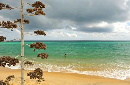the bather: Bather on the beach, island of Culatra, Algarve, southern Portugal, Europe