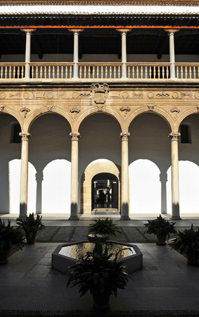 university of granada: Renaissance architecture of Granada, courtyard of the Hospital Real, Andalucia, Spain Editorial