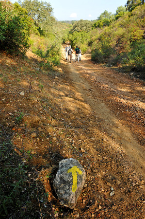 camino: Camino de Santiago, Via de la Plata, Province of Sevilla, Andalusia, Spain