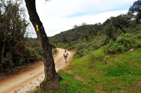 camino: Pilgrim, Mozarabic Camino de Santiago, Cerro Muriano, Province of Cordoba, Andalusia, Spain Stock Photo
