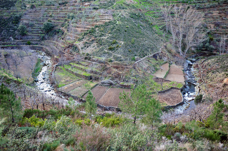 Hurdano River Valley orchards and terraced fields in Hurdes, Extremadura, Spain photo