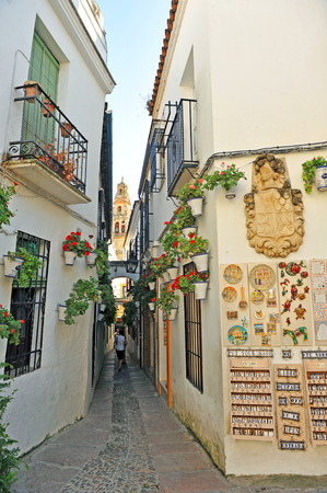 jewish quarter: The alley of flowers, Cordoba, Andalusia, Spain