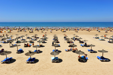 loungers: Sun loungers and parasols, panoramic view, Victoria Beach, Costa de la Luz, Cadiz, Andalusia, Spain