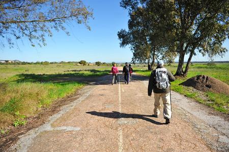 camino de santiago: Group of backpackers, Camino de Santiago, Merida, Via de la Plata, Badajoz province, Extremadura, Spain