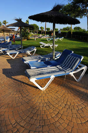 loungers: Sun loungers, umbrellas, lawn, swimming pool in summer