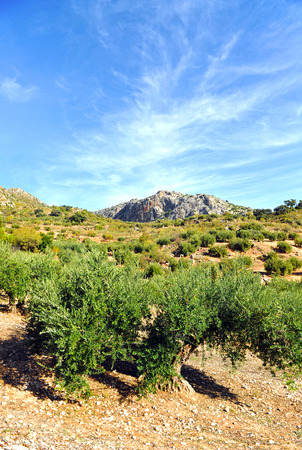 king neptune: The Natural Park of Subbetica, Priego de Cordoba, Andalusia, Spain