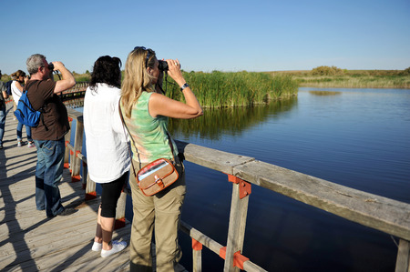 Bird watching, Tablas de Daimiel National Park, province of Ciudad Real, Castilla la Mancha, Spain