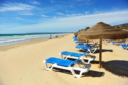 tarifa: Parasols and sun loungers, Zahara de los Atunes, Atlanterra beach, Cadiz province, Andalusia, Spain