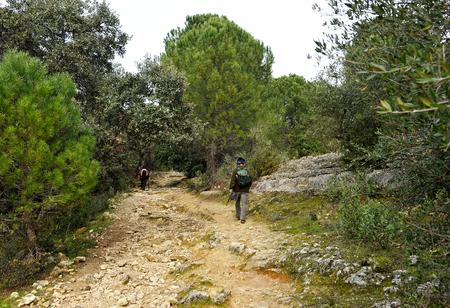 camino de santiago: Mozarabic Camino de Santiago, Cerro Muriano in the Sierra of Cordoba, Spain